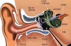 成都急性外耳道炎的病因和症状