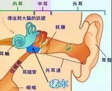成都外耳道炎的治疗护理